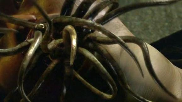 tentacles2_630x354