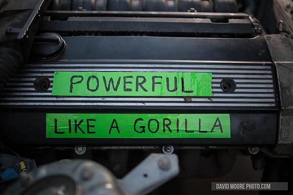 gorilla engine