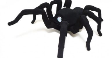 T8 robot spider