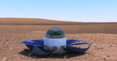 Popeye on Mars