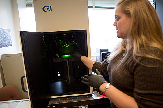 nanotube sensor