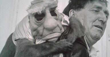 monkey yoda