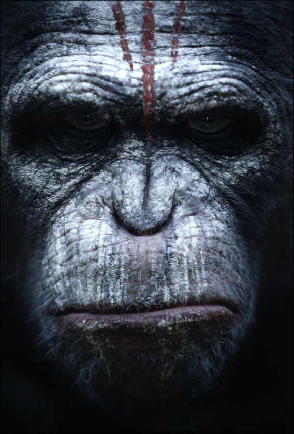 dawn-of-the-planet-of-the-apes-new-poster-03