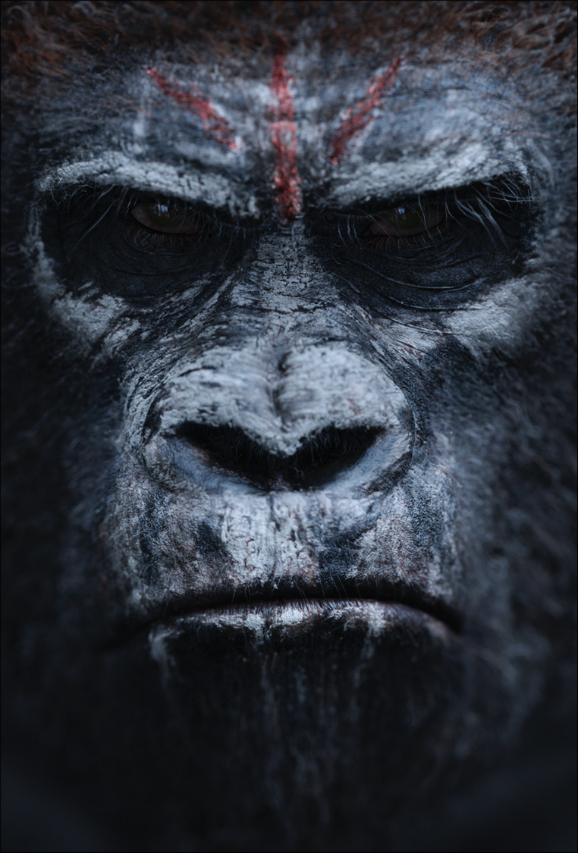 dawn-of-the-planet-of-the-apes-new-poster-04