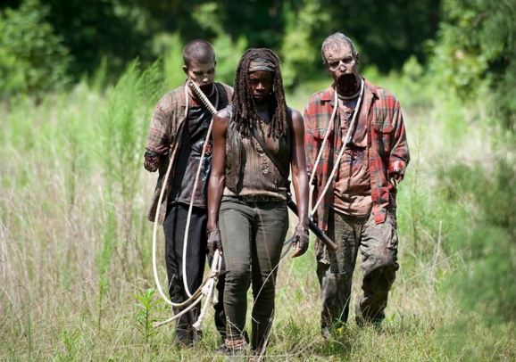 the-walking-dead-after-mid-season-premiere-michonne-two-walkers