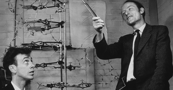 DISCOVERY OF CHEMICAL STRUCTURE OF DNA – FEBRUARY 28, 1953 ...