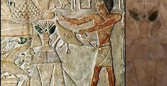 ETEgypt