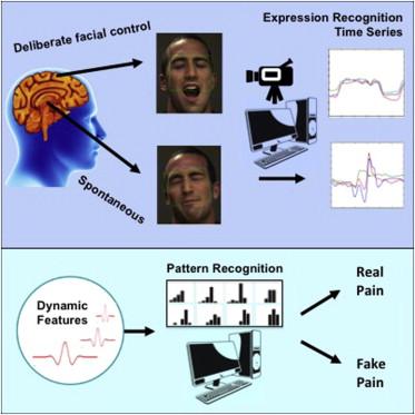real v. fake expressions