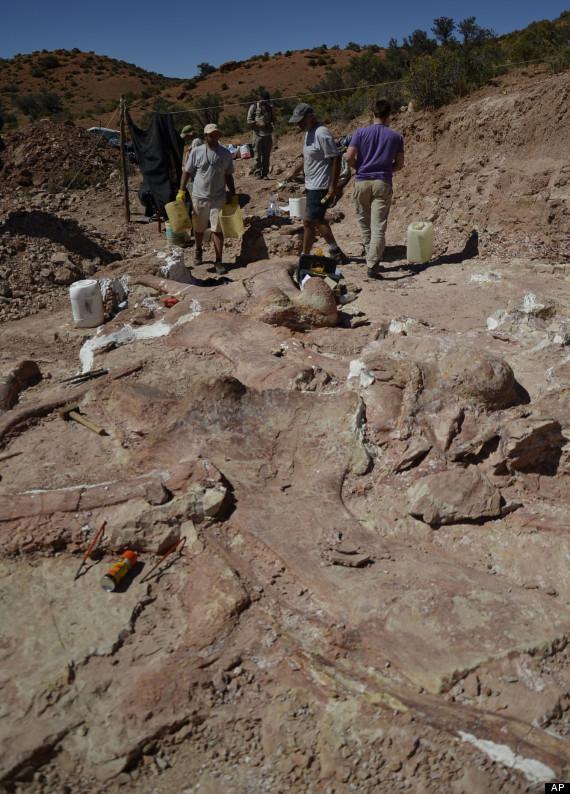 Argentina Giant Dinosaur