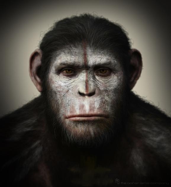 Apes8