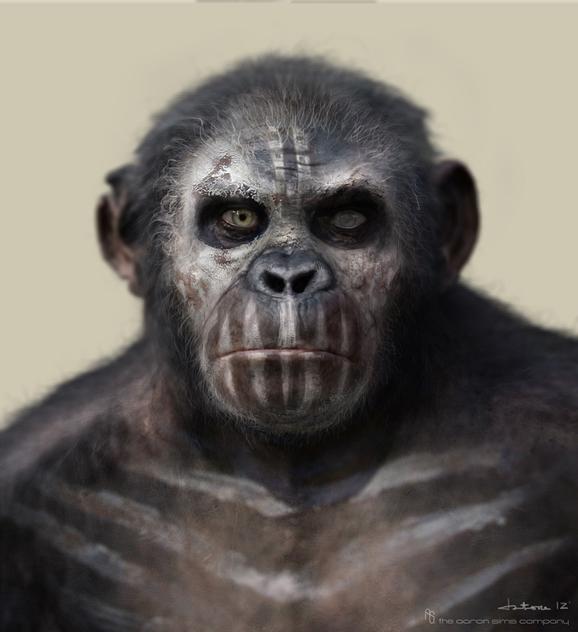 Apes9