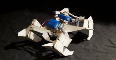 Self-Folding-Robots-004
