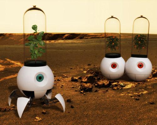 mars plants