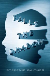 FallsShadow