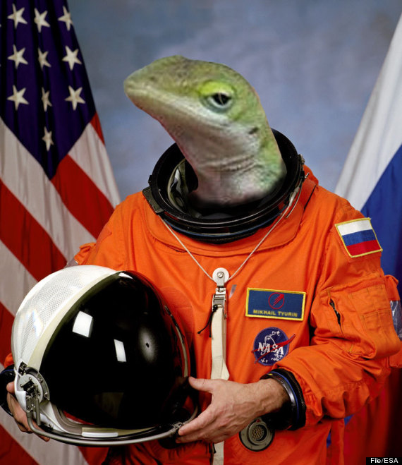 gecko space