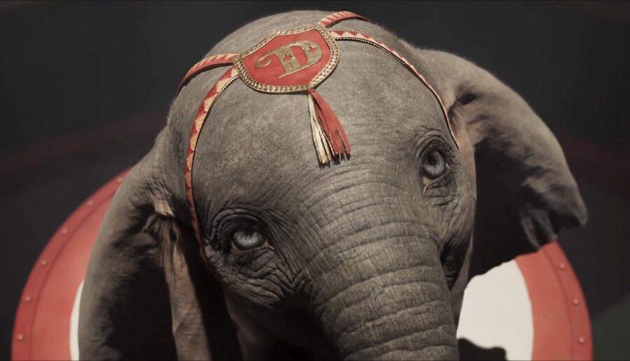Live-Action Dumbo