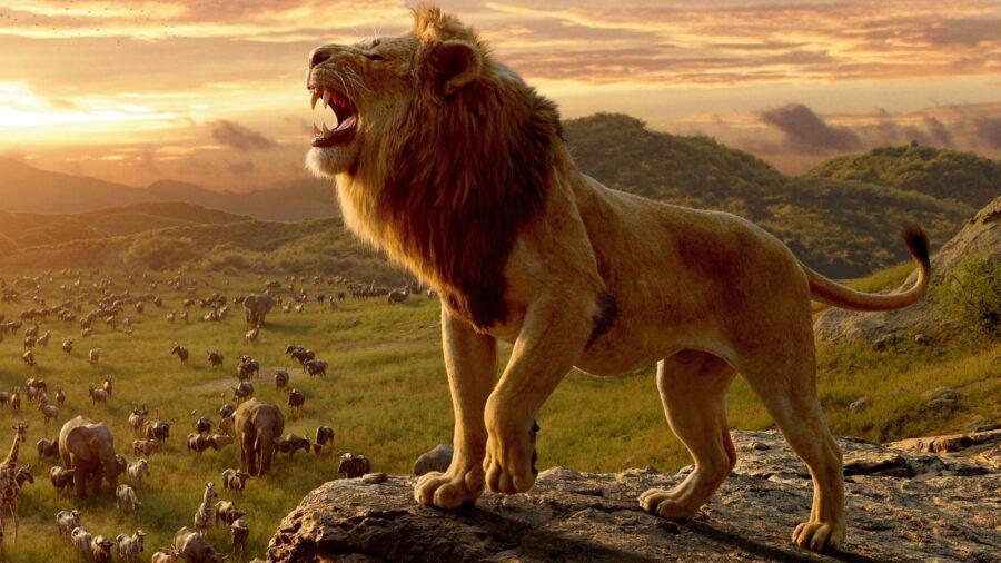 Disney's lion king remake
