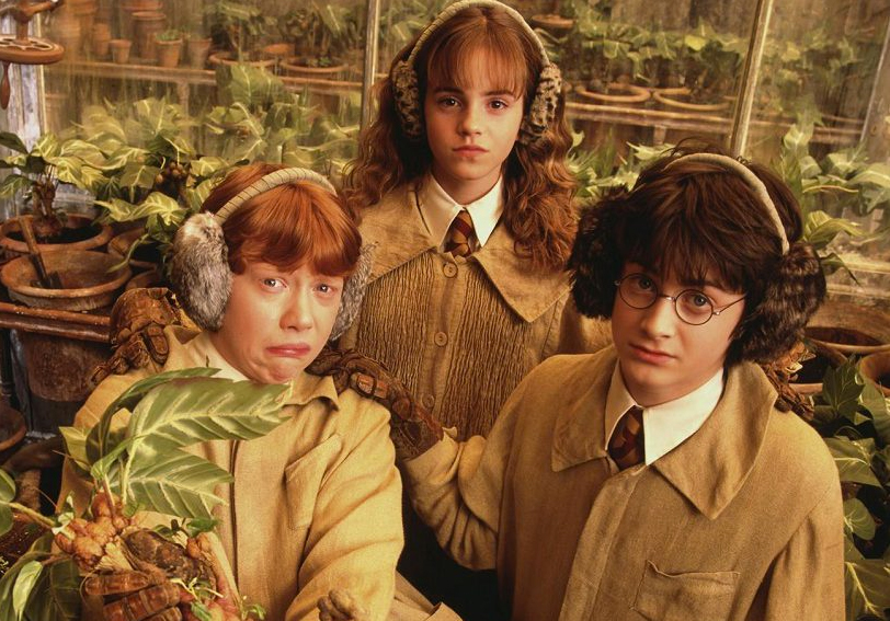 Harry Potter Cast Condemns JK Rowling