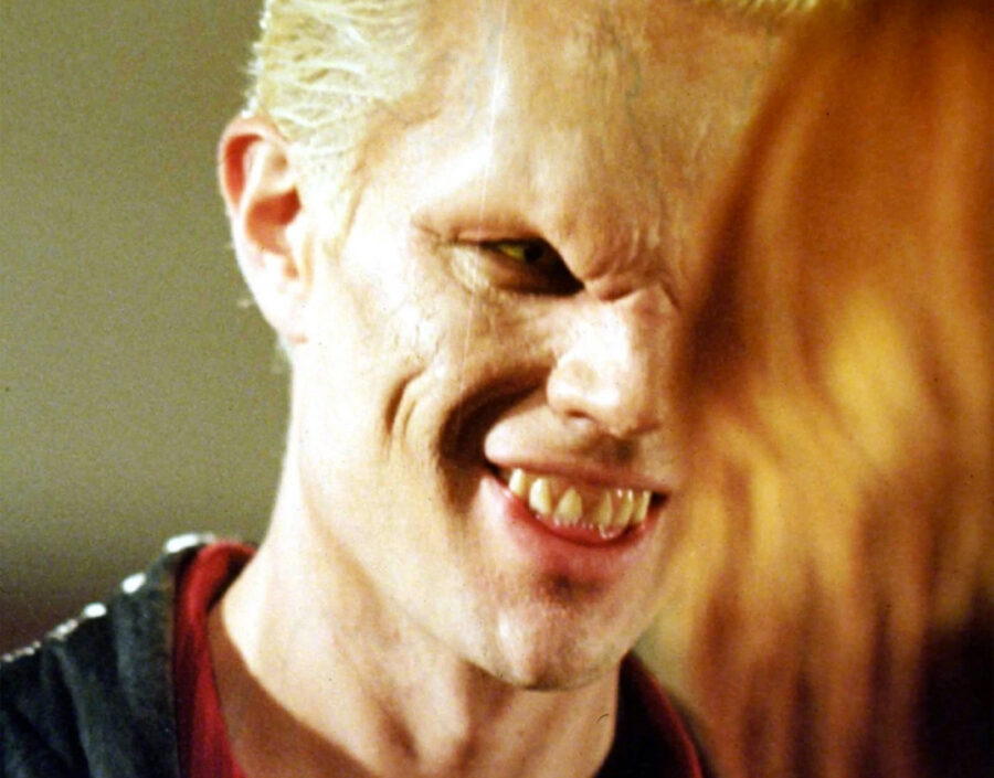 Buffy the Vampire Slayer spike