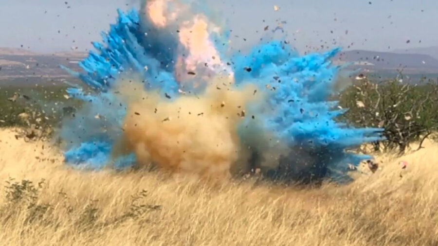 gender reveal party wildfire feature