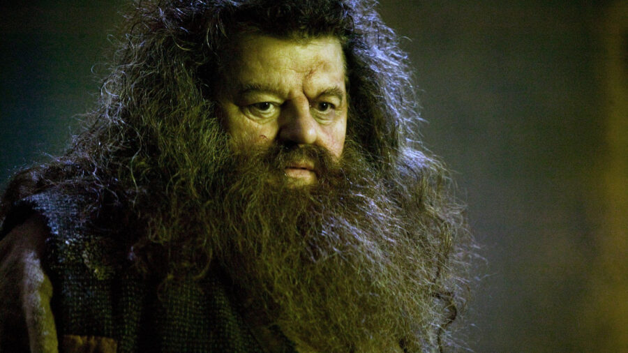 robbie coltrane hagrid feature