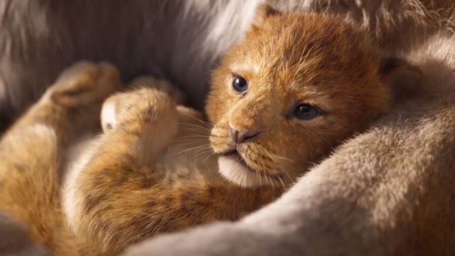 the lion king 2 feature