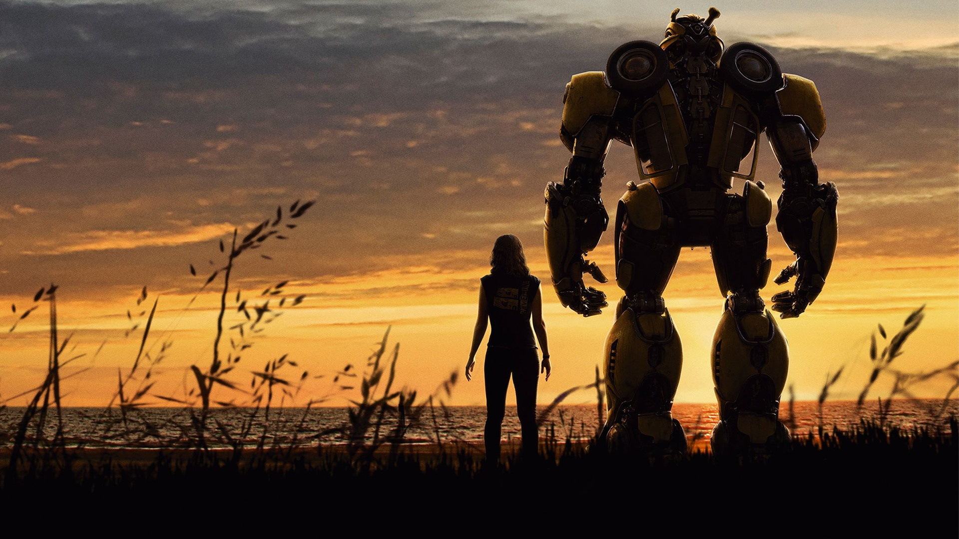 Bumblebee 2: All We Know About The Transformers Sequel