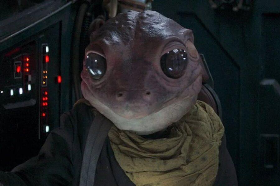 Frog Lady Mandalorian