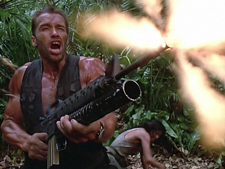 arnold predator gun