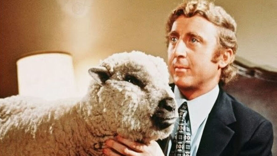 gene wilder sheep everything you wanted to know