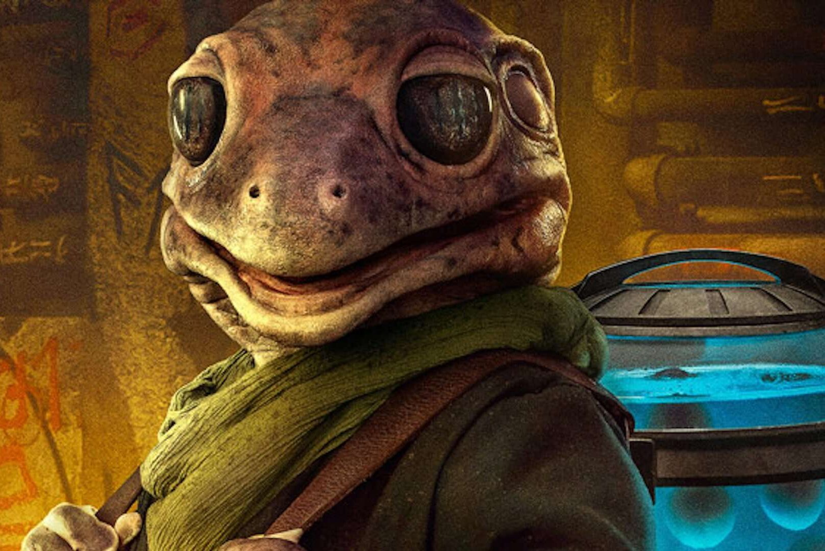 Frog Lady