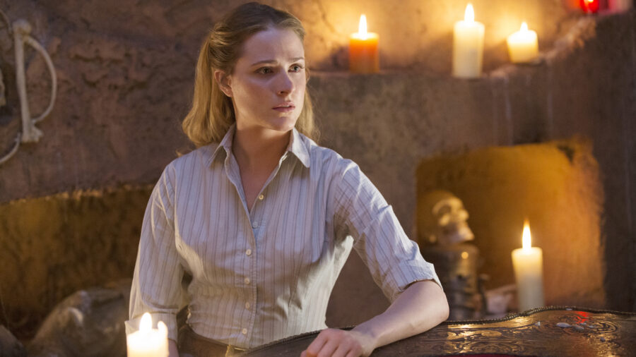 Evan Rachel Wood Westworld