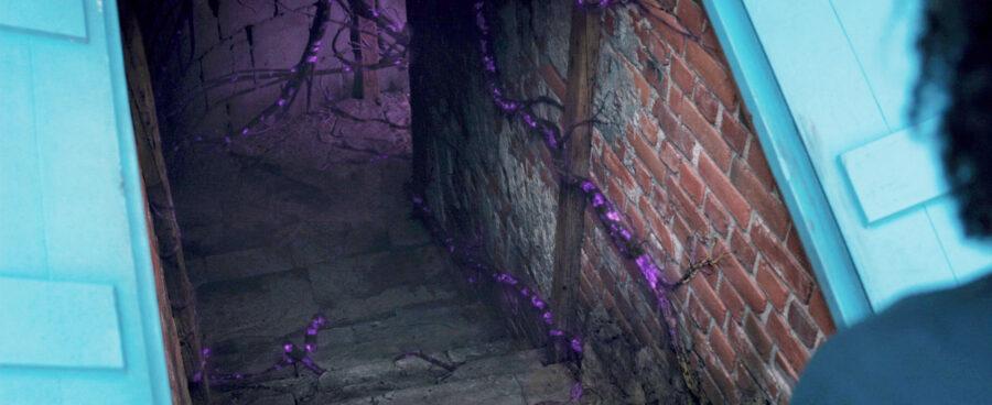 agatha basement