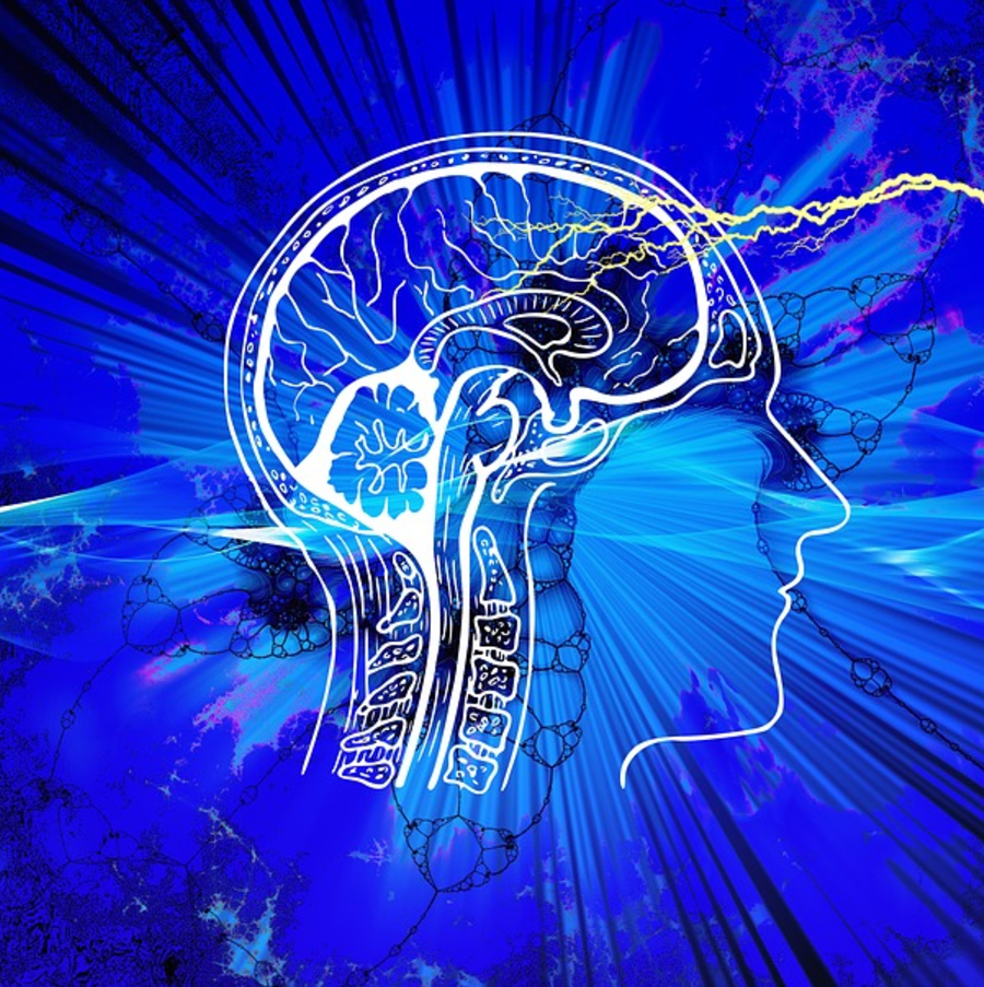 brain mind-blindness