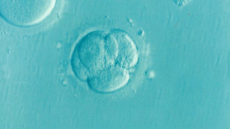 infertile