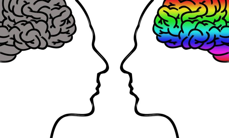 mind-blindness brains