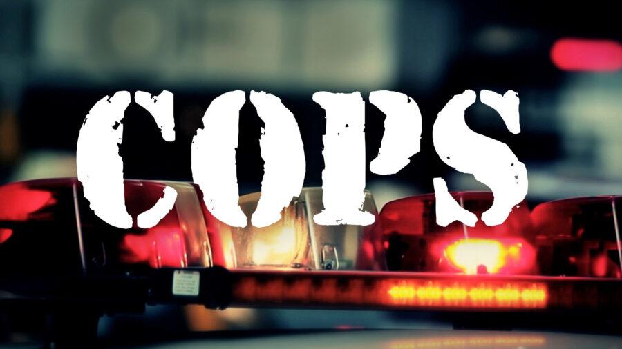 cops reality tv