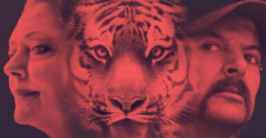 tiger king 2 carole baskin