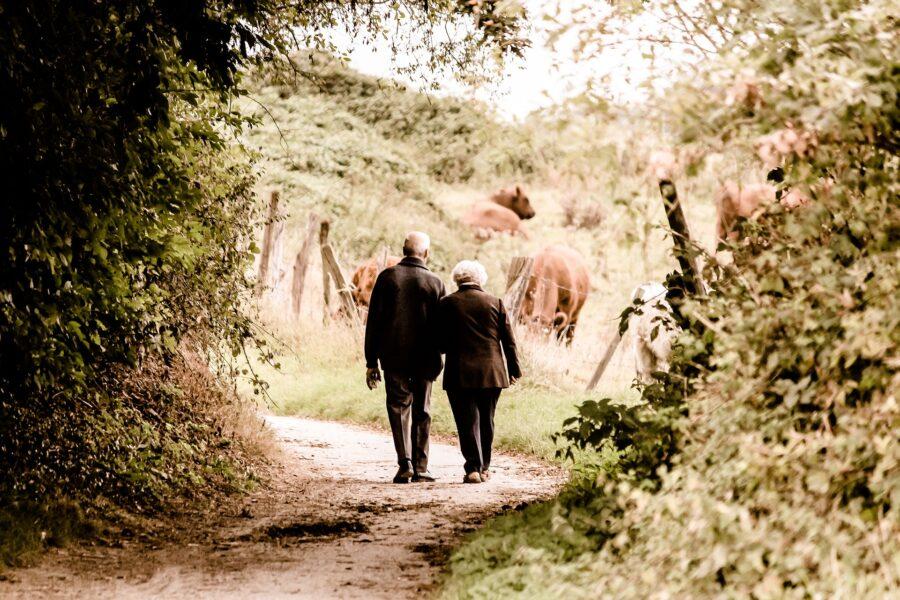 humans, old age, elderly